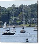 Sailboat Serenity Canvas Print