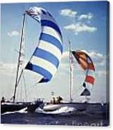 Sailboats Canvas Print