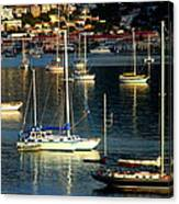 Sailboats Sunrise Canvas Print