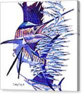 Sailfish Ballyhoo Canvas Print