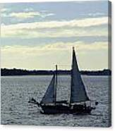 Sailin Canvas Print