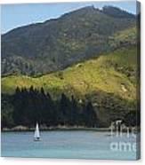 Sailing Cook Strait Canvas Print