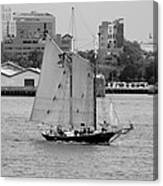 Sailing Free In Black And White Canvas Print