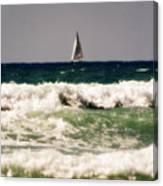 Sailing In California Canvas Print