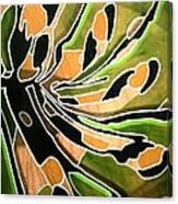 Saint Papilio Polyxenes Study Canvas Print