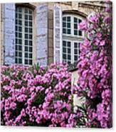 Saint Remy Windows Canvas Print