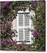 Saint Tropez Window Canvas Print