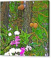 Sala Tree And Orchids At Buddhist University In Chiang Mai-thail Canvas Print