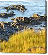 Salem Coastline Canvas Print