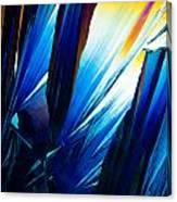Salicylic Acid Crystals In Polarized Light Canvas Print