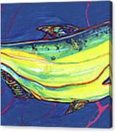 Salmon Of Knowledge Canvas Print