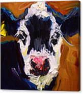 Salt And Pepper Cow 2 Canvas Print