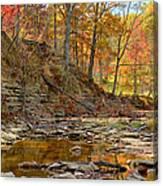 Salt Creek Canvas Print
