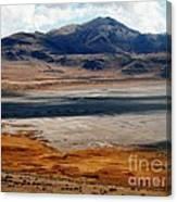 Salt Lake City Antelope Island Canvas Print