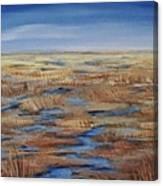 Salt Marsh In Summer Canvas Print