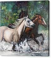 Salt River Horseplay Canvas Print