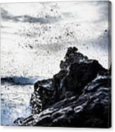 Salt Spray In The Air Canvas Print