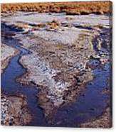 Salt Stream Confluence Canvas Print