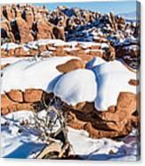 Salt Valley Overlook Canvas Print