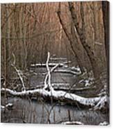 Salty Logs  Canvas Print