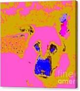 Sam 5144 10 Canvas Print