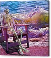 A-loon On The Beach  Canvas Print