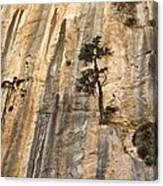 Samaria Gorge National Park, Greece Canvas Print