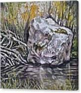 San Poil River Rock Canvas Print