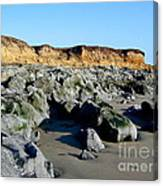 San Simeon Rocky Beach Canvas Print