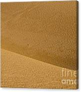 Sand Curves Canvas Print