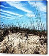 Sand Dune At Alantic Beach Canvas Print