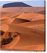 Sand Dune Sculpture  Canvas Print