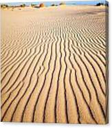 Sand Dunes At Eucla Canvas Print