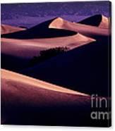 Sand Dunes At Sunrise Canvas Print