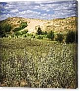 Sand Dunes In Manitoba Canvas Print