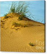 Sand Hill Canvas Print