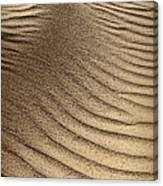 Sand Pattern Abstract - 3 Canvas Print