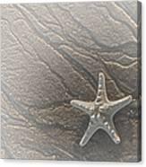 Sand Prints And Starfish II Canvas Print