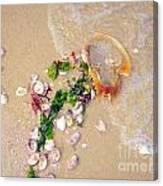 Sand Sea And Shells Canvas Print