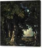 Sandersons Brook Canvas Print