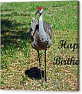 Sandhill Crane Birthday Canvas Print