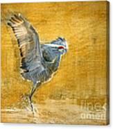 Sandhill Dancing Canvas Print