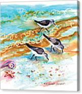 Sandpiper Trio Canvas Print