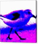 Sandpiper Abstract Canvas Print