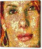 Sandra Bullock In The Way Of Arcimboldo Canvas Print