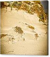 Sands Of Elafonisi Canvas Print