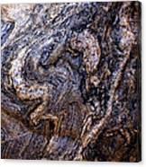 Sandstone Boulder Detail Canvas Print