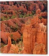 Sandstone Hoodoos At Sunrise Bryce Canyon National Park Utah Canvas Print