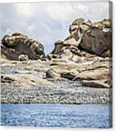 Sandstone Island Sculptures Canvas Print
