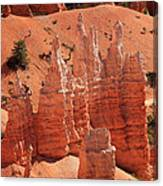 Sandstone Pillars Canvas Print